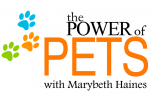 he Power of Pets was created in honour of all pets and those who love them to celebrate the bond and connection each gives to the other. Marybeth Haines' passion lies in sharing with you how you can capture this to use each day in empowerment and healing. Pets are meant to be celebrated for the many gifts they give to us and that is what The Power of Pets is all about! You are invited to join this global initiative of pet lovers worldwide in honour and tribute to our pets of today and yesterday. *Pet Loss Support* FREE book available at www.powerofpets365.com.